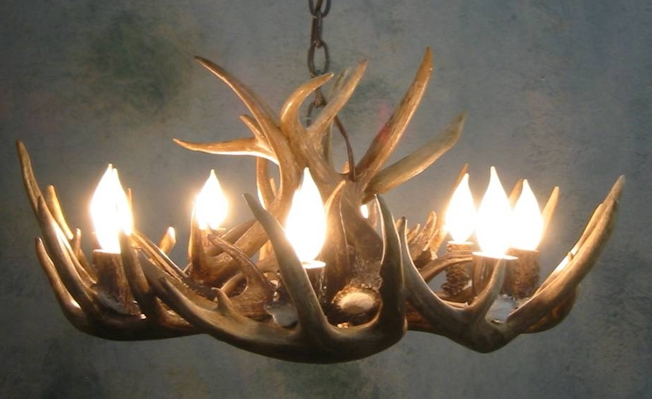 Well Known Antler Chandeliers For Sale (View 9 of 10)