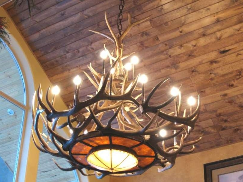 Well Liked Large Antler Chandelier For Fresh Real Antler Chandelier Antler Chandeliers For Sale Real Mccoy (View 5 of 10)