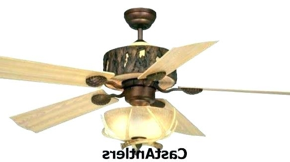36 Outdoor Ceiling Fan Ceiling Fan With Light Awesome Outdoor For Most Popular 36 Inch Outdoor Ceiling Fans With Lights (View 5 of 15)