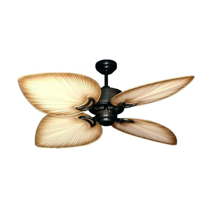 Bronze Outdoor Ceiling Fan With Light Enclosed Medium Size Of Fans Within Best And Newest 72 Predator Bronze Outdoor Ceiling Fans With Light Kit (View 11 of 15)