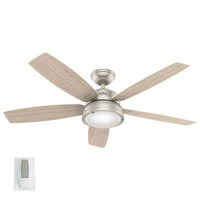 Current Nickel Outdoor Ceiling Fans Regarding Hunter – Nickel – Outdoor – Ceiling Fans – Lighting – The Home Depot (View 10 of 15)
