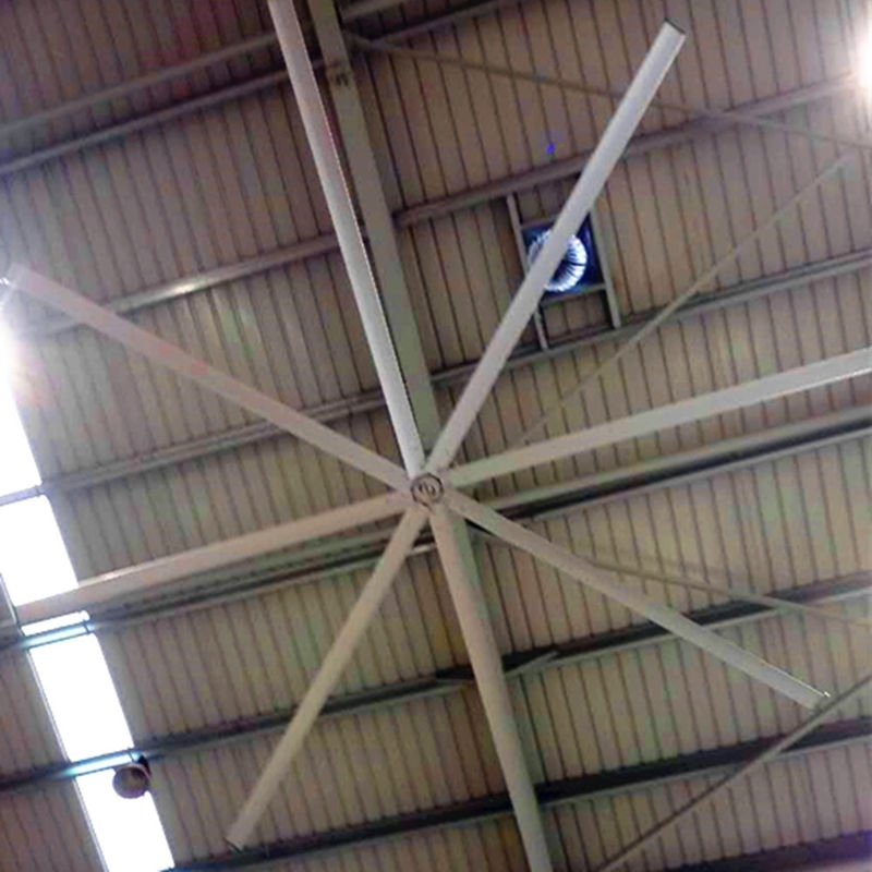 High Volume Outdoor Ceiling Fans Regarding Famous Awf49 Large Outdoor Ceiling Fans , High Volume Low Speed Industrial Fans (View 5 of 15)