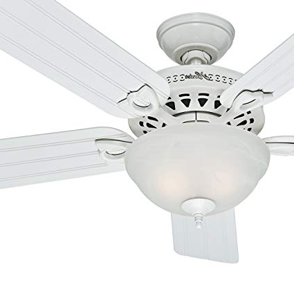 Hunter Fan Outdoor Ceiling Fan In White With A Swirled Marble Light For Popular Hunter Outdoor Ceiling Fans With White Lights (Gallery 15 of 15)