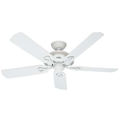 Hunter Outdoor Ceiling Fans With White Lights Within Newest Hunter – Wet Rated – Ceiling Fans – Lighting – The Home Depot (Gallery 1 of 15)