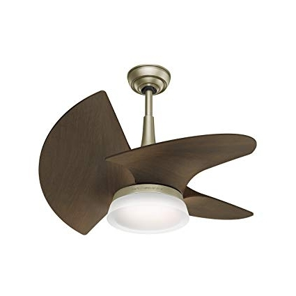 Mini Outdoor Ceiling Fans With Lights With Well Known Casablanca 59138 Orchid Outdoor Ceiling Fan With Wall Control, Small (View 8 of 15)