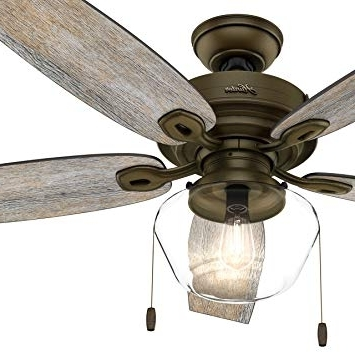 Most Recently Released Hunter Fan 52 In. Outdoor Ceiling Fan Includes Led Globe Light Kit For Outdoor Ceiling Fans With Led Globe (Gallery 1 of 15)