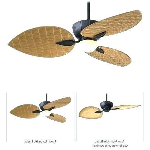 Popular Outdoor Ceiling Fans With Light And Remote Intended For Outdoor Fan With Remote Outdoor Ceiling Fan With Remote 3 Blade (View 13 of 15)
