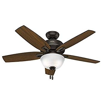 Preferred 48 Outdoor Ceiling Fans With Light Kit In Hunter 48 In (View 11 of 15)