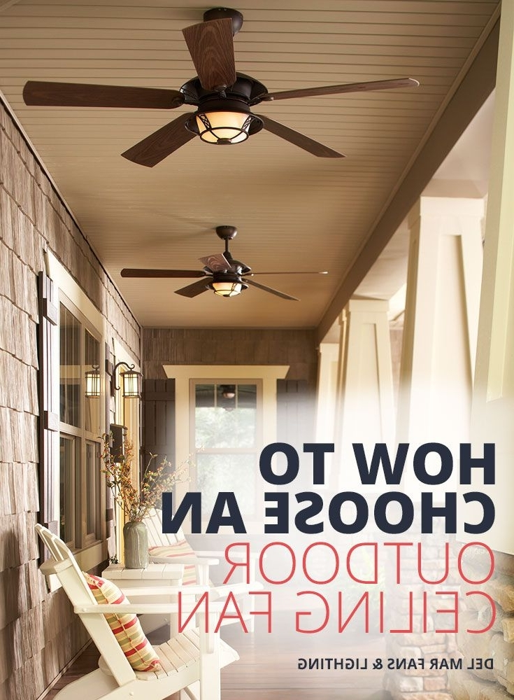 Trendy Indoor Ceiling Fans Vs (View 7 of 15)