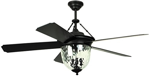 Featured Photo of Black Outdoor Ceiling Fans With Light