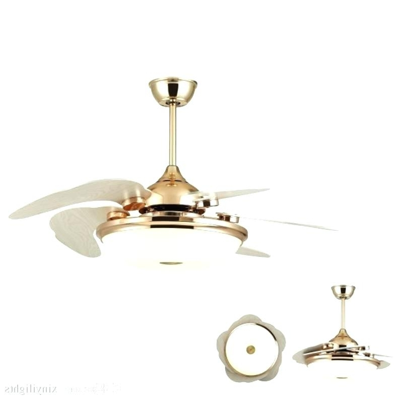Well Liked Ceiling Fan Sale Medium Size Of Ceiling Fan Contemporary Helicopter Inside Outdoor Ceiling Fans With Guard (View 6 of 15)