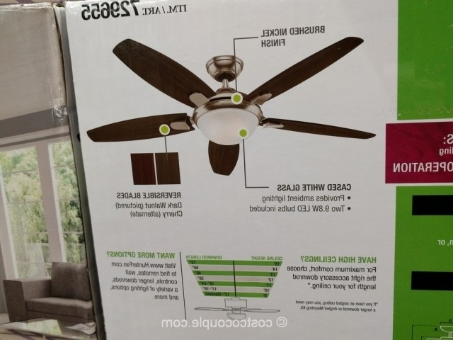 Widely Used Outdoor Ceiling Fans At Costco Intended For Awesome Costco Outdoor Ceiling Fans Ideas Indoor Stunning Hunter (View 15 of 15)
