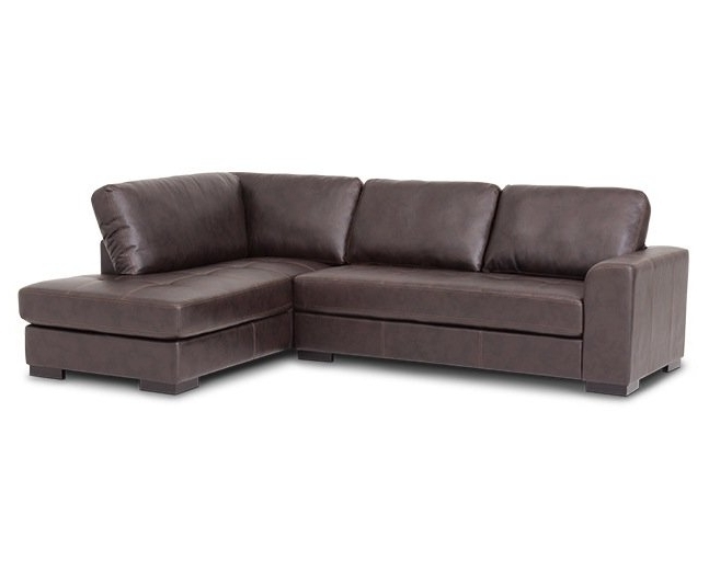Furniture Row Intended For Avery 2 Piece Sectionals With Raf Armless Chaise (View 14 of 15)