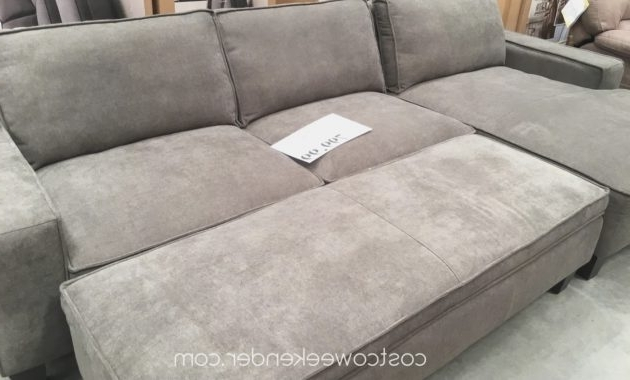 Living Regarding Most Recent Taren Reversible Sofa/chaise Sleeper Sectionals With Storage Ottoman (View 13 of 15)