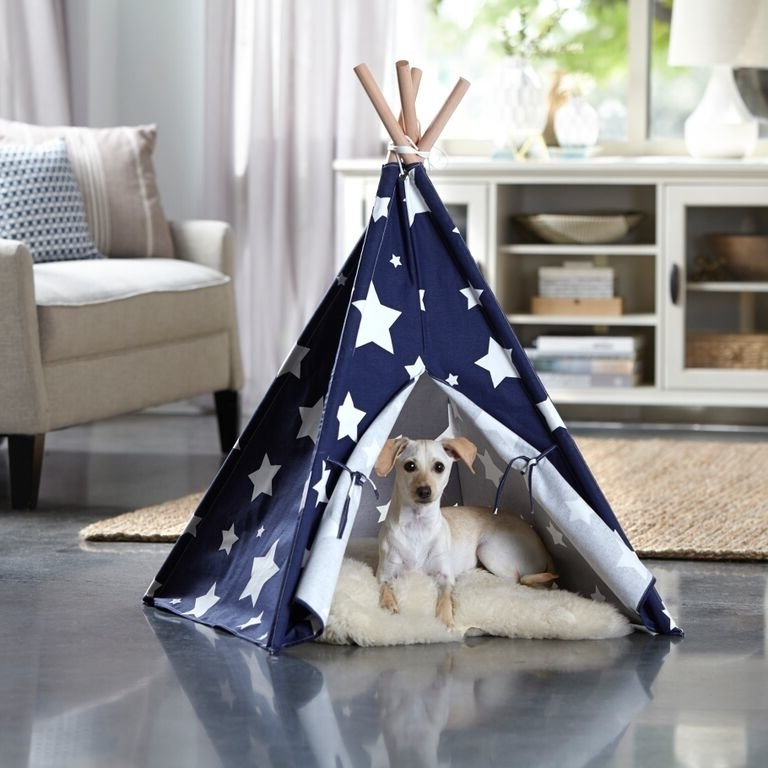Preferred Tucker Murphy Pet Carly Teepee Dog Bed & Reviews (View 15 of 20)