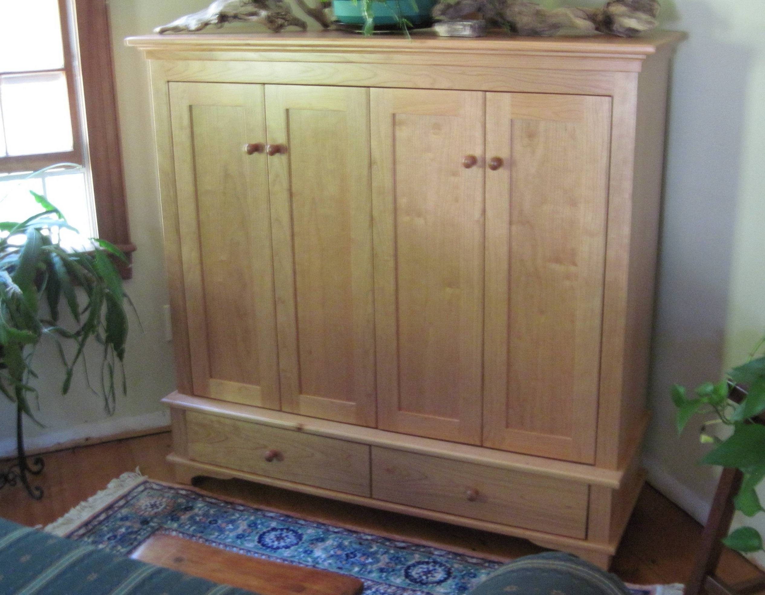Enclosed Tv Cabinet (Gallery 3 of 20)