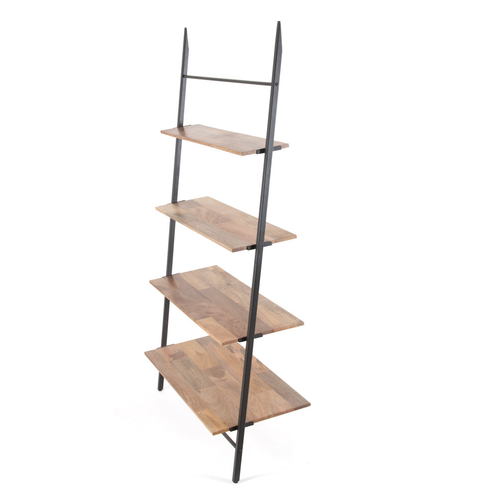 Almanzar Ladder Bookcases For Well Known Barnard Shelf Ladder Bookcase (View 9 of 20)