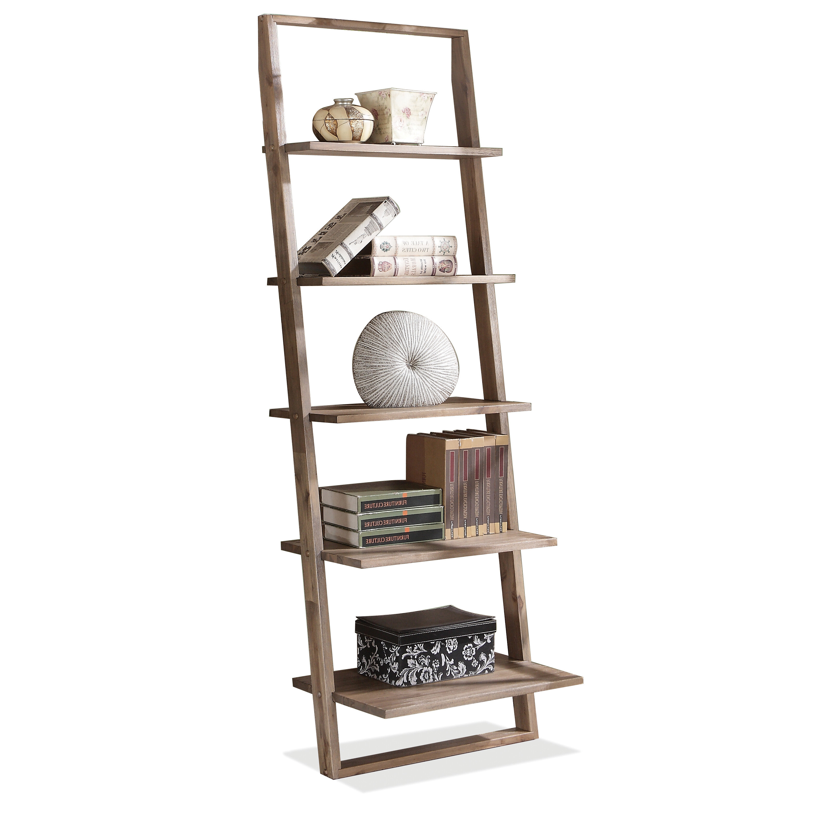 Antoninus Ladder Bookcases Pertaining To Most Recently Released Modern Leaning Bookcases (View 14 of 20)