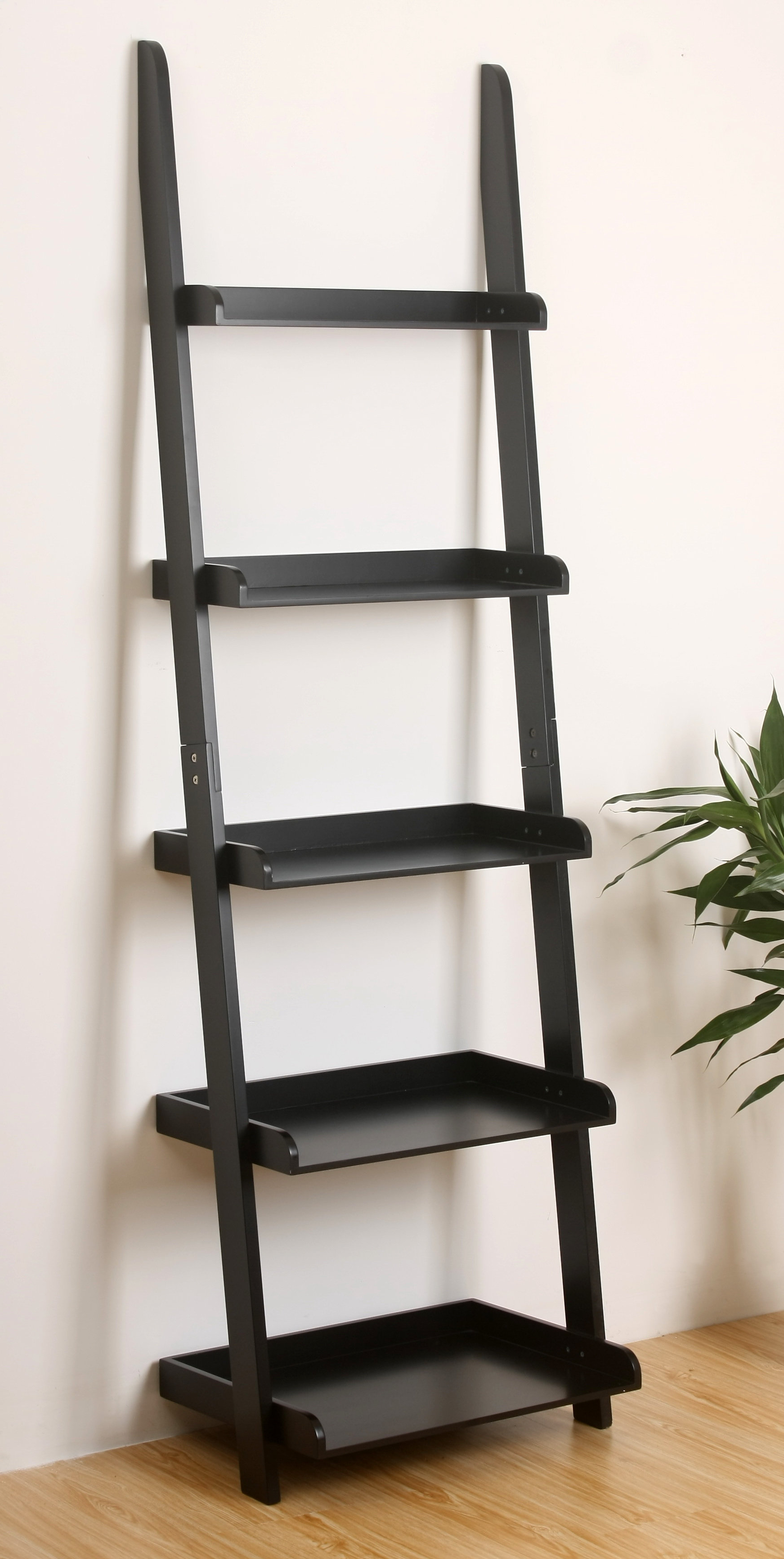 Best And Newest Ricardo Ladder Bookcase With Alfred Ladder Bookcases (View 16 of 20)