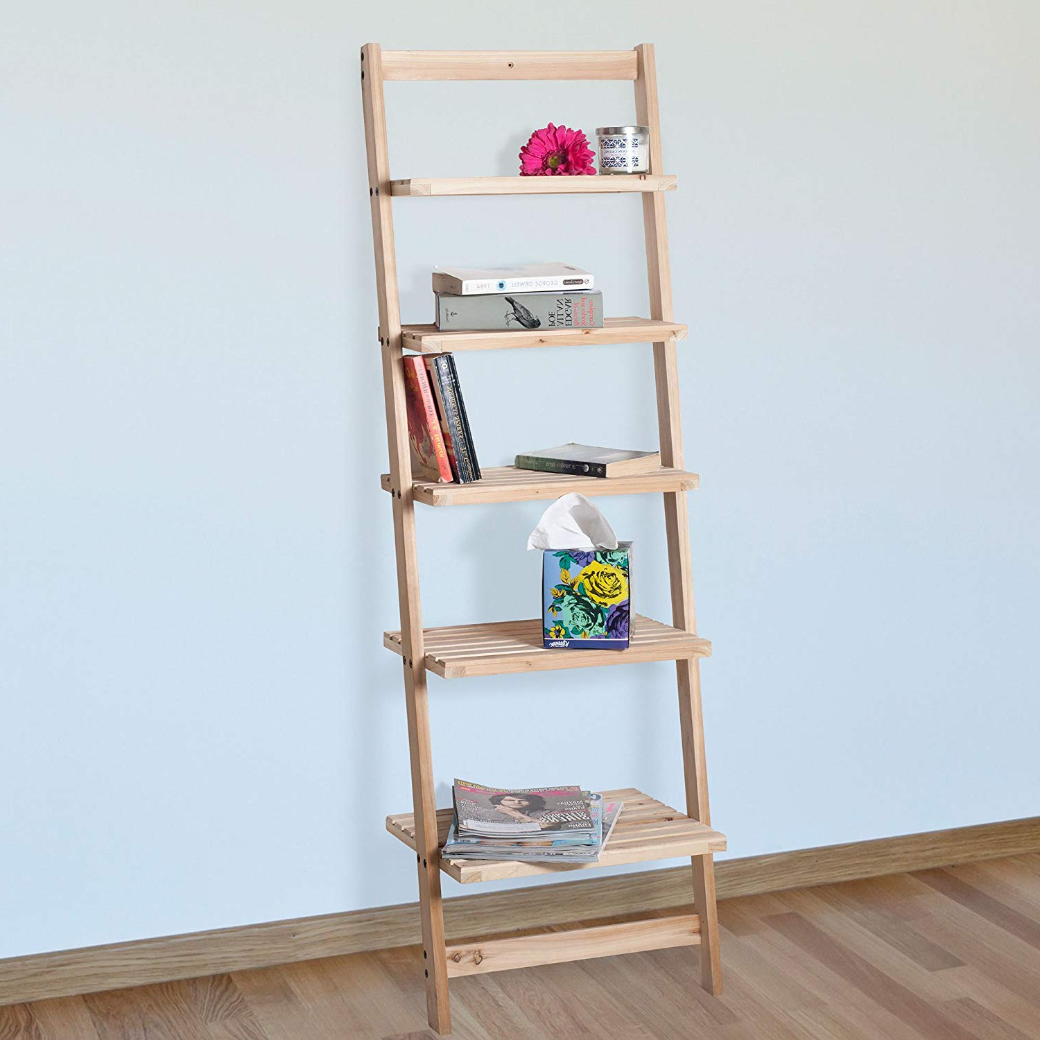 Book Shelf For Living Room, Bathroom, And Kitchen Shelving, Home Décor Lavish Home 5 Tier Decorative Leaning Ladder Shelf Wood Display Shelving Intended For Favorite Leandra Ladder Bookcases (View 18 of 20)