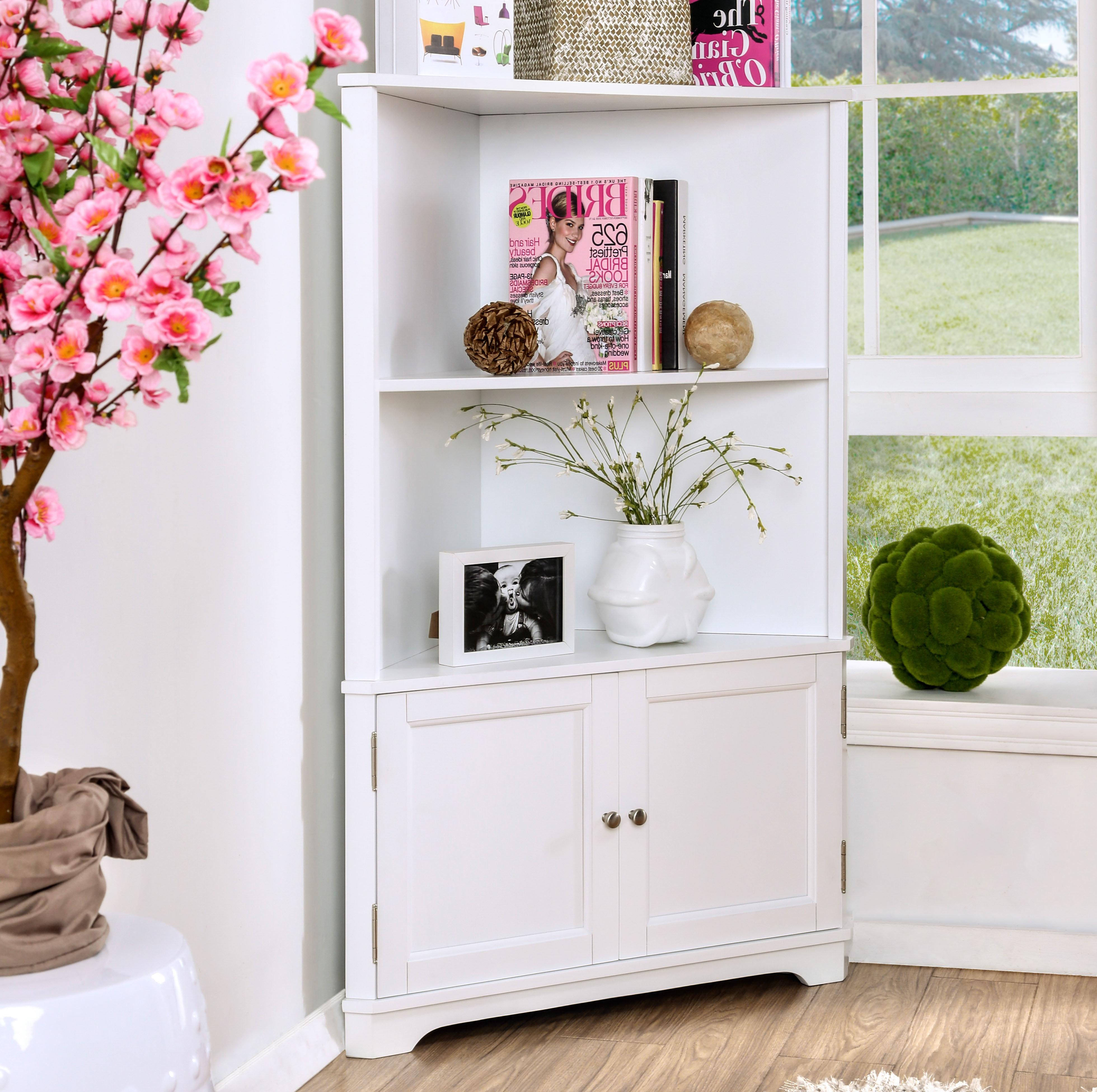 Featured Photo of Vas Corner Bookcases