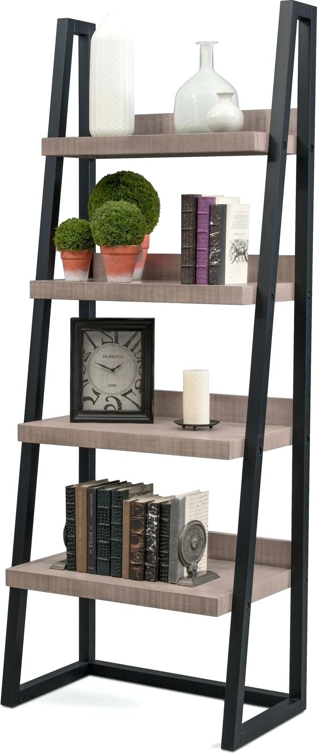 Leandra Ladder Bookcases Throughout Popular Metal Ladder Shelf – Leanstats (View 20 of 20)