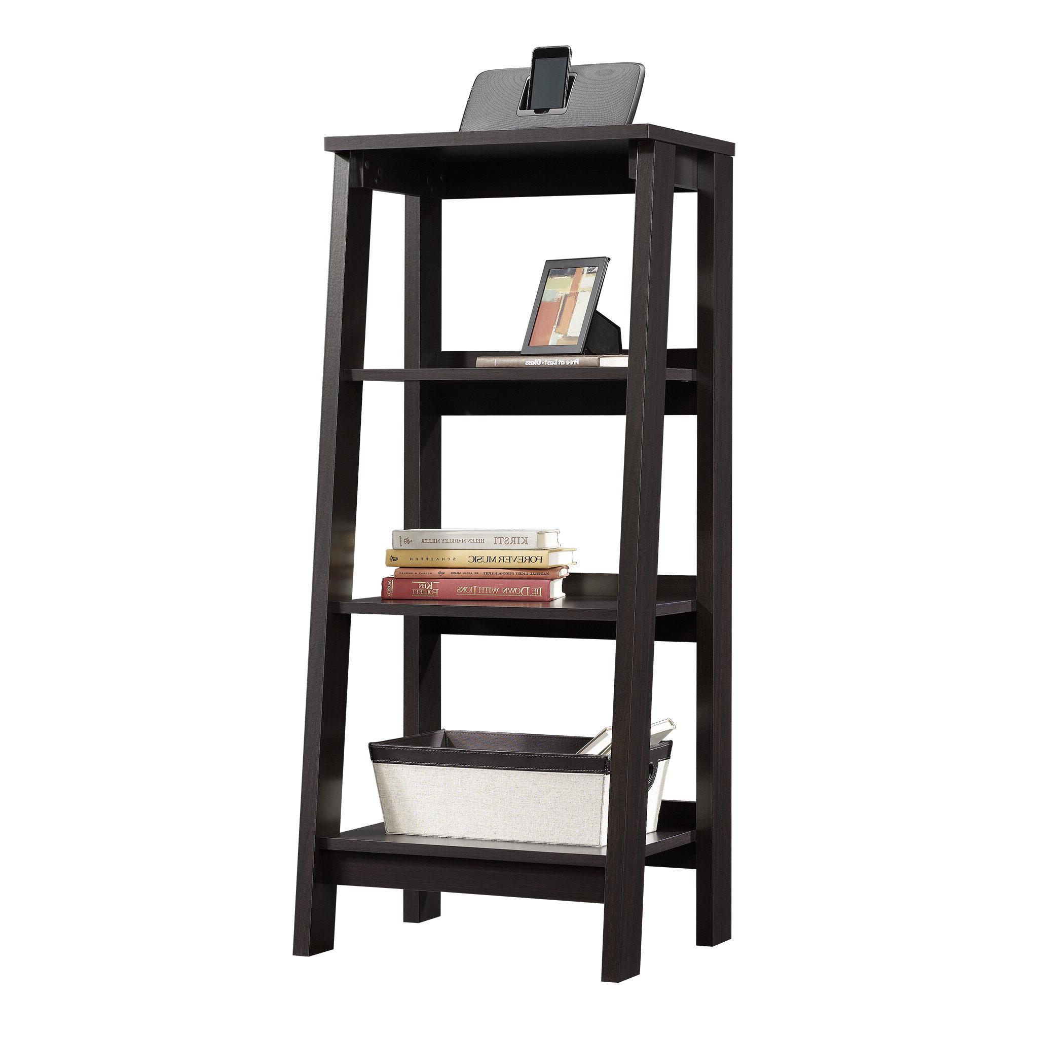Massena Ladder Bookcase Throughout Most Recent Massena Ladder Bookcases (View 8 of 20)