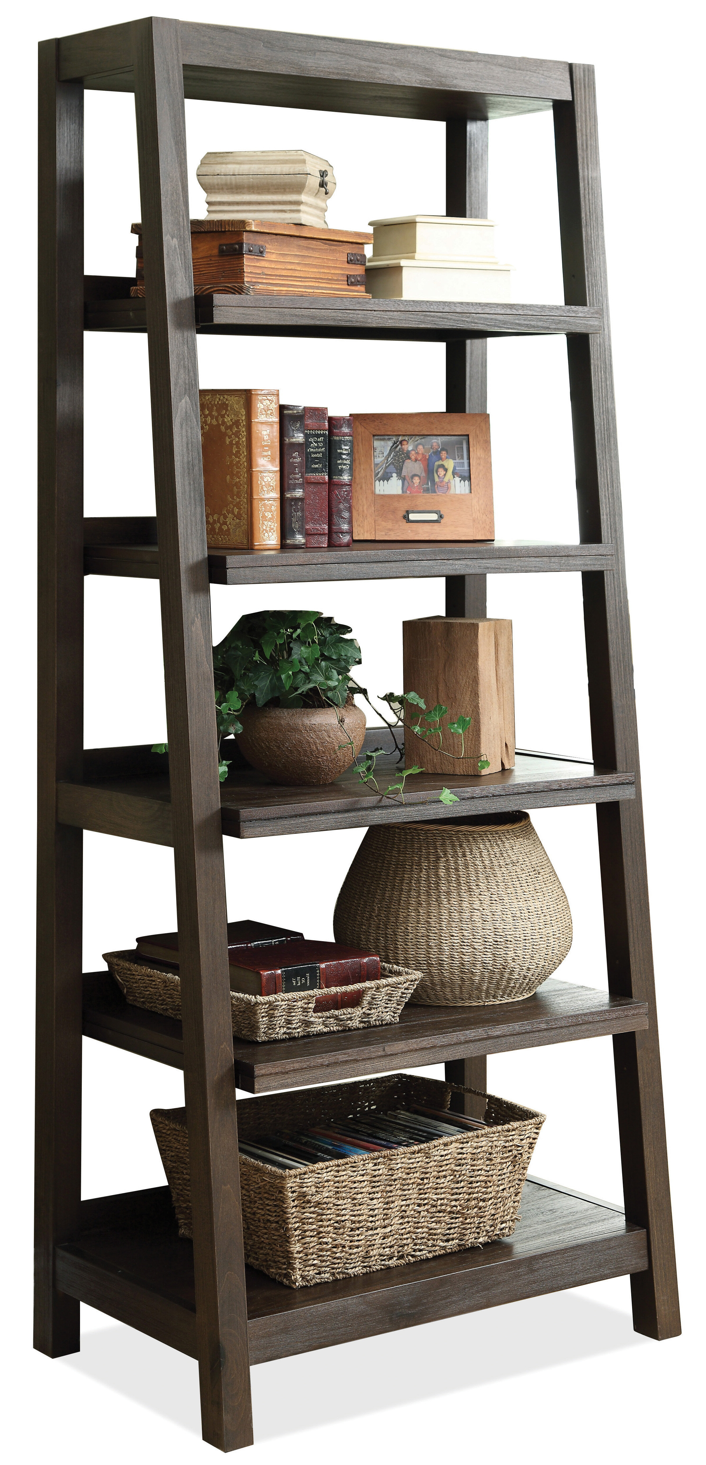 Most Recent Promenade Ladder Bookcase With Regard To Leandra Ladder Bookcases (View 13 of 20)