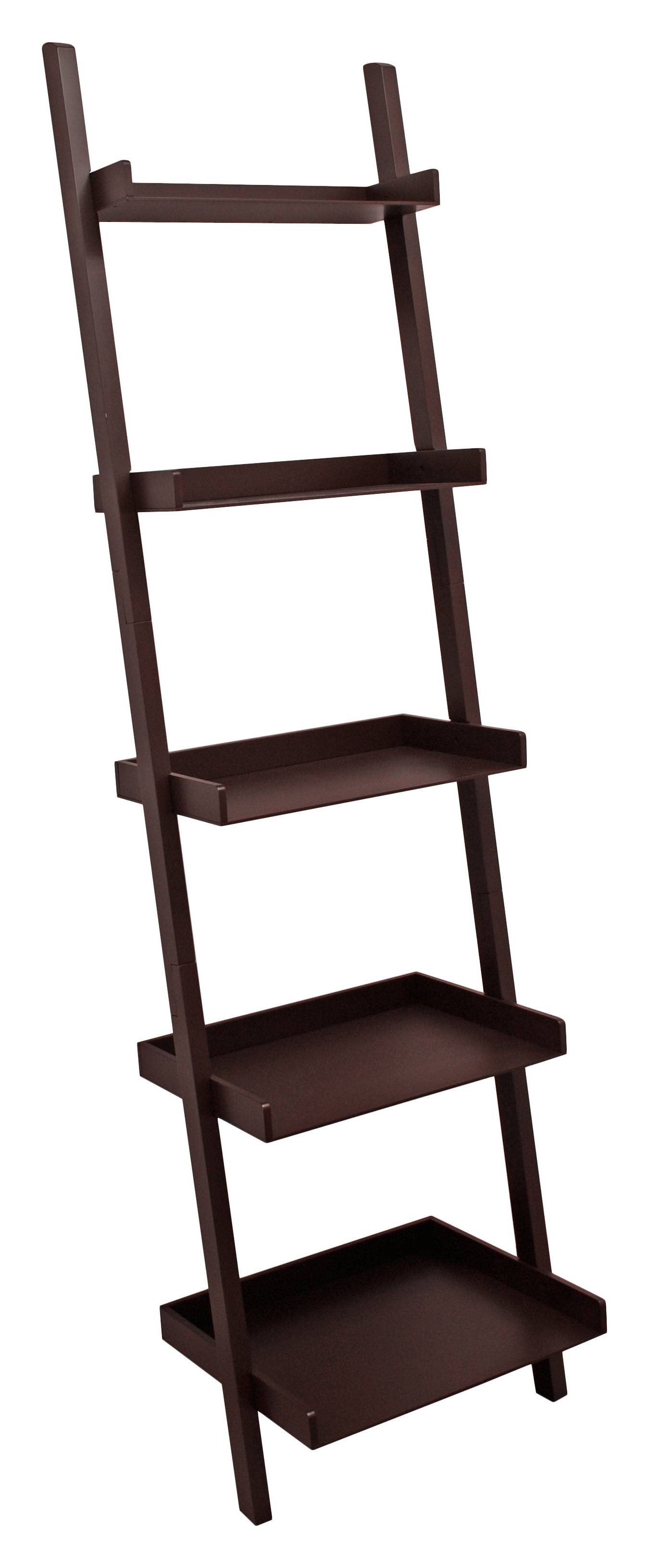 Widely Used Brock Ladder Bookcases Intended For Pfaff 5 Tier Ladder Bookcase (View 17 of 20)