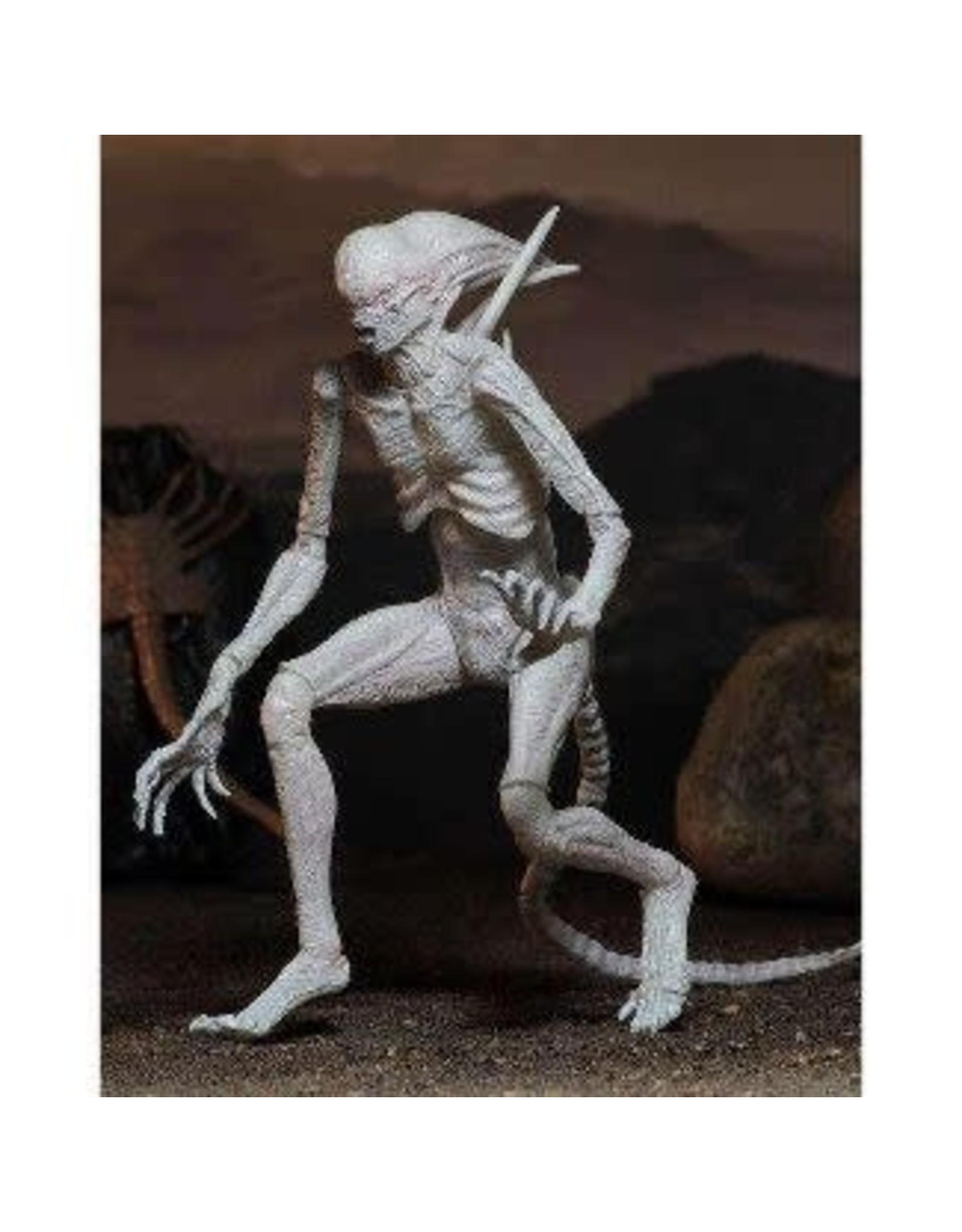 Favorite Alien Covenant Series 1 Neomorph Action Figure – Big Bang Toys Regarding Covent Tv Stands (View 11 of 25)