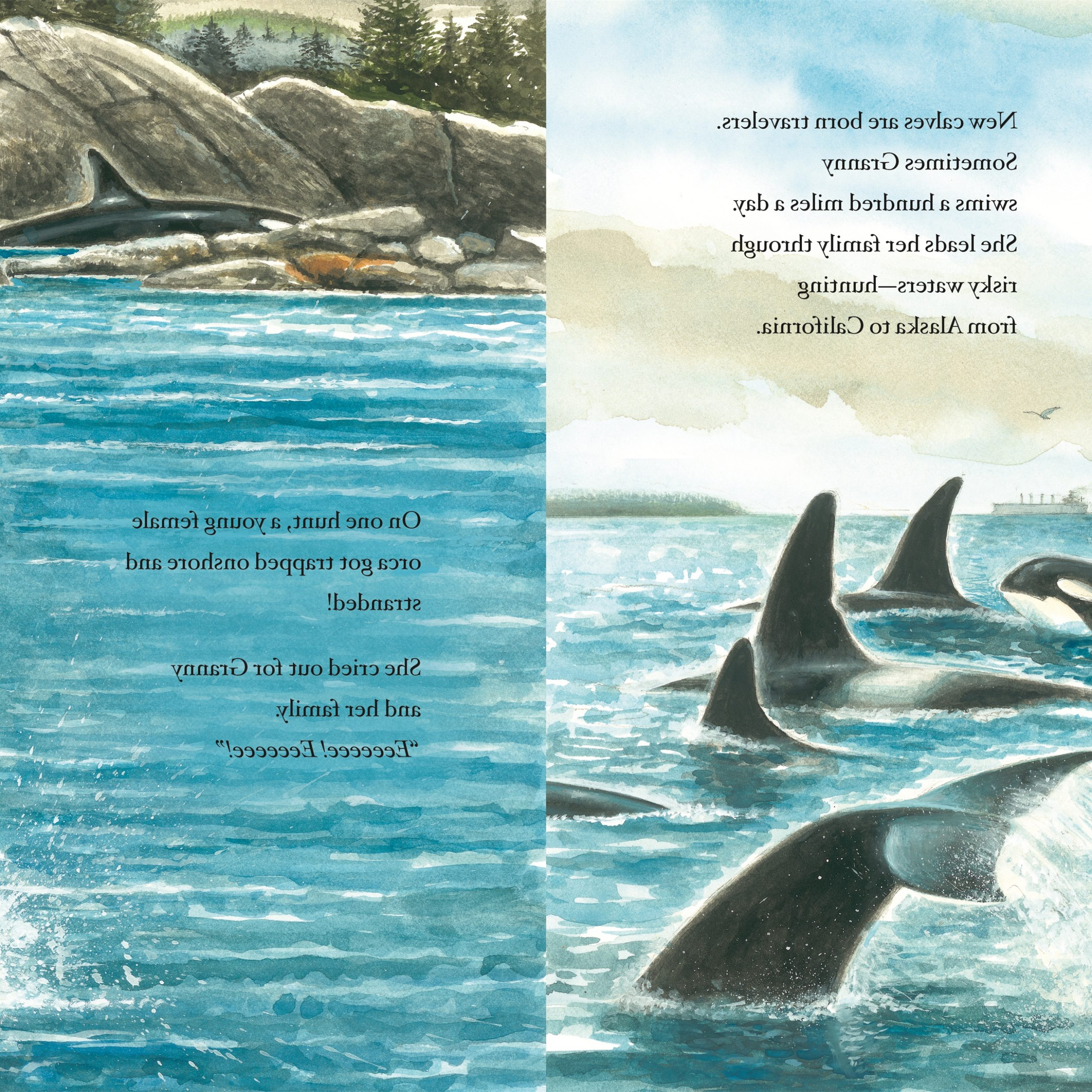 Well Known The Whale Family Book Download – Q.e (View 11 of 25)