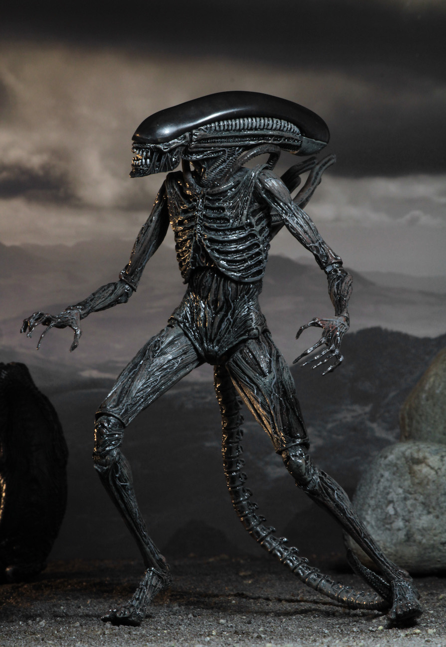 We've Got Neca's Full Line Of 'alien: Covenant' Toys Pertaining To Popular Covent Tv Stands (View 21 of 25)