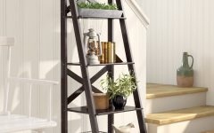 Kaitlyn Ladder Bookcases