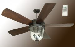 60 Inch Outdoor Ceiling Fans with Lights