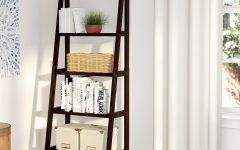 Ranie Ladder Bookcases