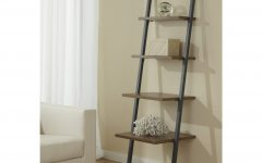 Ladder Ikea Bookcases