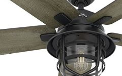 Outdoor Ceiling Fans with Remote