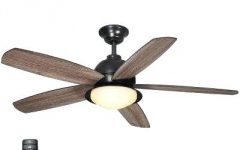 Outdoor Ceiling Fans for Coastal Areas