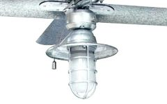 Outdoor Ceiling Fans With Guard