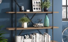 Champney Modern Etagere Bookcases