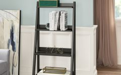 Riddleville Ladder Bookcases