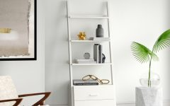 Antoninus Ladder Bookcases