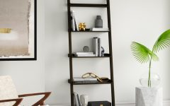 Averett Ladder Bookcases