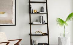 Averett Ladder Bookcases