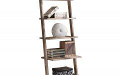 Noelle Ashlynn Ladder Bookcases
