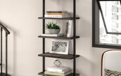 Moskowitz Ladder Bookcases