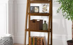 Bordelon Slatted Ladder Bookcases