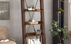 Leandra Ladder Bookcases