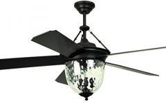 Black Outdoor Ceiling Fans with Light