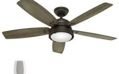 Hunter Outdoor Ceiling Fans with Lights and Remote